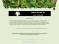 Hvozd – blíže přírodě