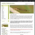 vážky Sokolovska